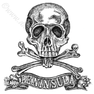 Brunswick Infantry Regiment No92
