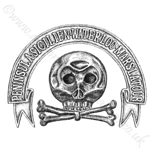 Brunswick Hussars Regt No17
