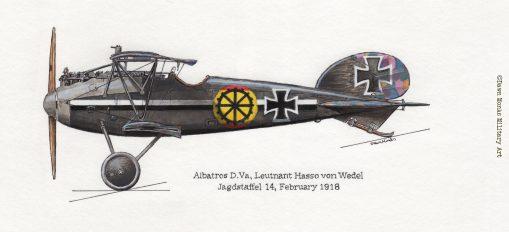 von Wedel Albatros D.Va (grey) artwork - In Different Skies - Issue 5 - Iron Cross Magazine