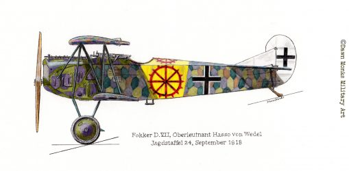 von Wedel Fokker D.VII artwork - In Different Skies - Issue 5 - Iron Cross Magazine